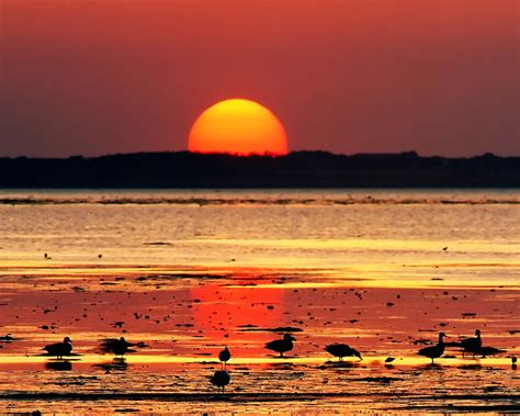 40 Cool Sunset Pictures - Cool Photography Pictures