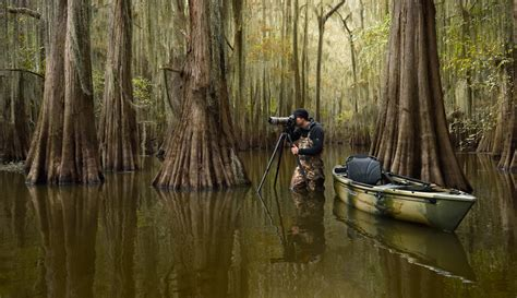 Into The Cypress Swamps - Squiver